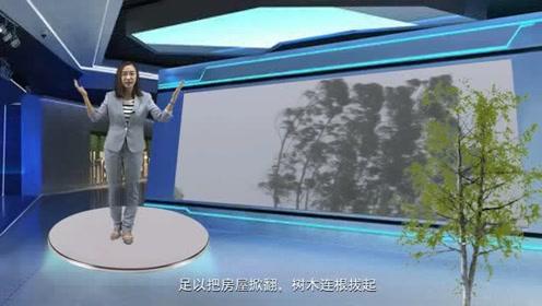 VR之眼:暴露在强台风中,会怎么样?