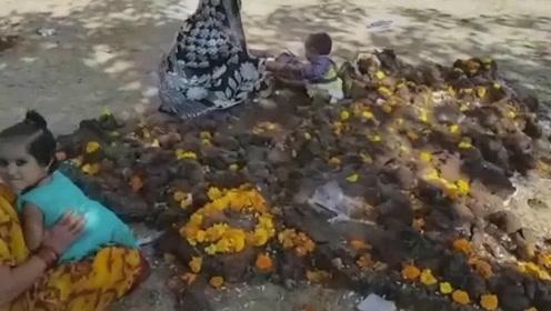 奇葩!印度父母将孩子丢进牛粪堆祈祷健康好运
