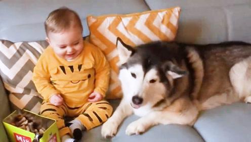 宝宝无意中打了个喷嚏,随后爸爸夸张的反应把宝宝逗乐了