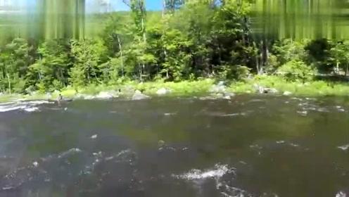 极限运动:独滑木舟挑战湍急河流!