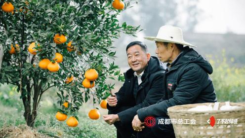 他用30年帮扶无数农户成百万富翁,他说:大家富才是真的富