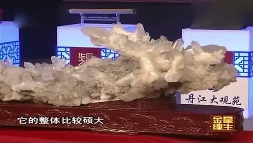 男子花了300万买回来一条6.5亿年前的水晶龙,专家直呼:你要发了!