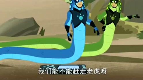 qq怎么弄指定红包兄弟:qq怎么弄指定红包兄弟启动眼镜蛇超能力,能否战胜老虎呢?