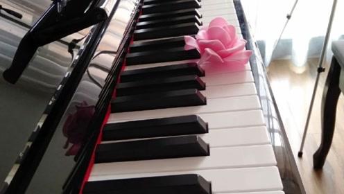 小美女《女儿情》电钢琴演奏,意境太美了,单曲循环!