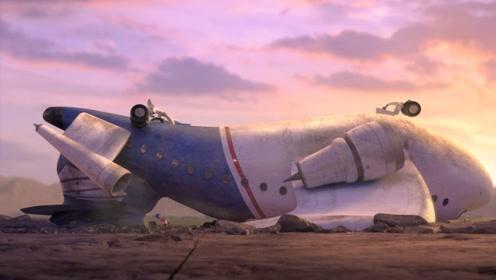 一只小蜜蜂闯入机场,在领航员身边乱窜,最终毁了一架飞机!