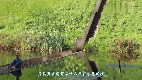 """建筑界的""""鬼斧神工""""桥比水面还低1米,过桥人不怕被淹吗"""