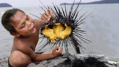 小男孩在荒岛上捕获全身是刺的海胆,拿起咬着吃,生存能力好强
