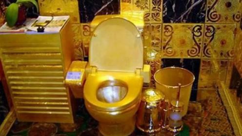 24K纯黄金打造的马桶!价值千万谁都可以体验,看完不淡定了