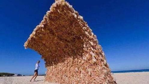 女子沙滩发现一堵墙,好奇走近一看,顿时不淡定了!