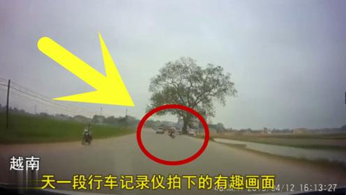 男子骑摩托车潇洒超车,结果技术上的失误,真是尴尬