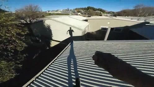 外国人有独特的控制人口数量的方法:新西兰屋顶跑酷,一气呵成