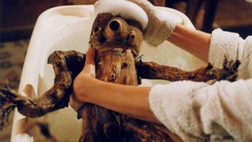 妻子不能怀孕,男子造了个木偶安慰,没想到它变成了怪物争宠