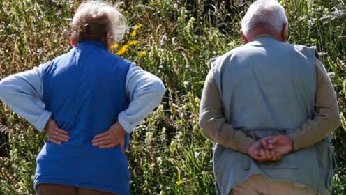 最新研究:预防老年痴呆几步最有效?麻省研究人员告诉你