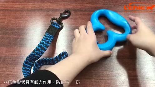 狗狗牵引绳使用方法