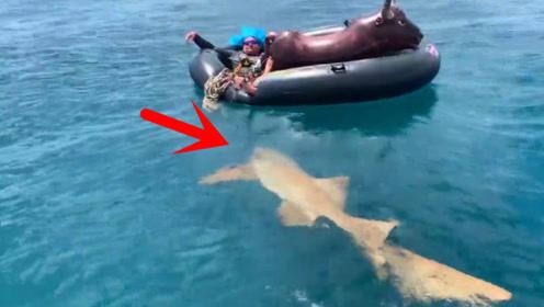 充气船都快累翻了,男子硬撑着拉住鱼竿,场面太刺激了!