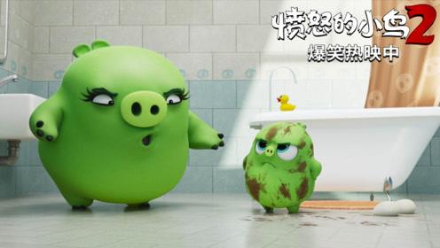 """《愤怒的小鸟2》""""猪猪实验室""""片段 """"憨猪黑科技""""笑果十足"""