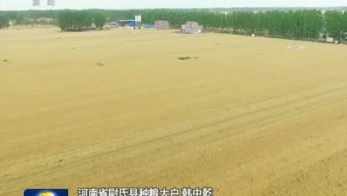 优化结构 推进粮食生产绿色