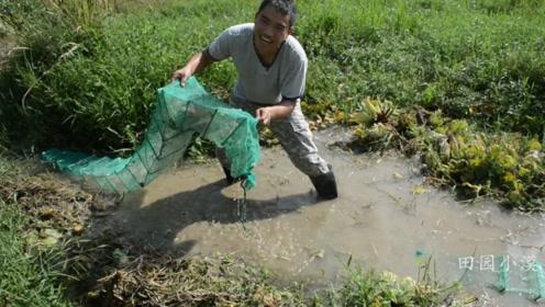 农村荒废了两年的鱼塘,地笼刚下十几分钟就惊喜不断