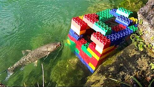 老外脑洞大开,用乐高玩具组装陷阱捉鱼,最后真的能捉到鱼吗?