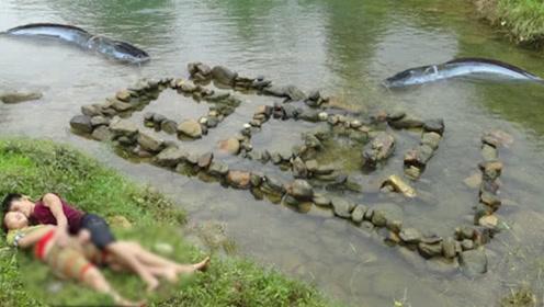 """夫妻用""""石头""""摆出迷宫,竟立马就有大鱼上钩,河边烤着吃真香!"""