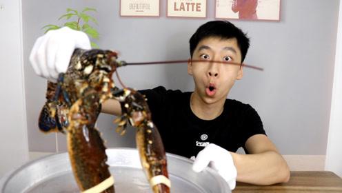 试吃300元一只的法国蓝色大龙虾,味道会比波士顿龙虾好吃吗?