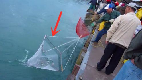 渔网扔下水里,过会再拉上来一看乐开花,晚上有下酒菜了!
