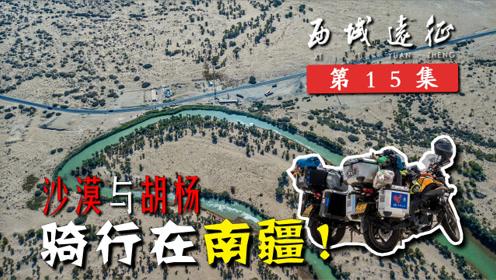西域远征15丨骑行在南疆,从塔里木河沙漠胡杨到天山峡谷达坂!