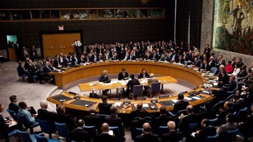 """美俄率先带头响应,联合国再添""""新成员""""?东方大国态度很关键"""
