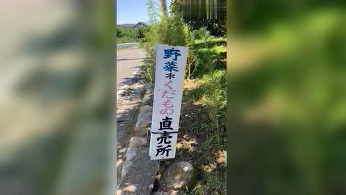 不经意遇见日本的无人贩卖所,看到这,是满载而归了吧!