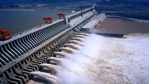 中国三峡落差180米,鱼儿要如何到上游去?说出了你可能不信!