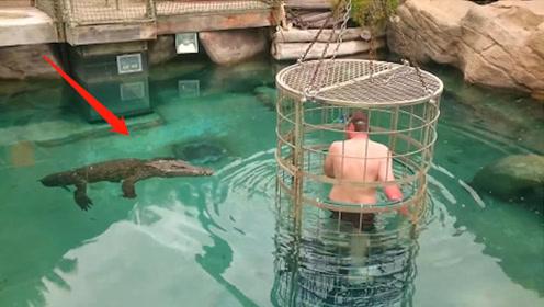 壮汉被关进笼子放入水中,鳄鱼朝他缓缓游过来,不料下秒意外发生