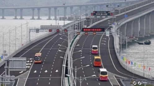 """港珠澳大桥成""""摆设""""?车辆寥寥无几,究竟是什么原因?"""