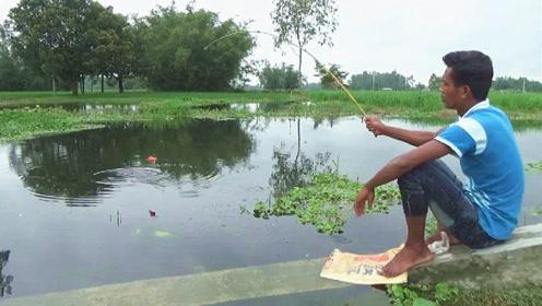 小哥钓鱼真有一套,不慌不忙,一拉一条,这样钓鱼让人看着好过瘾