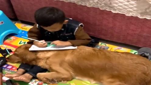 偶然拍到儿子跟狗狗一起的画面,瞬间感动,好有爱!