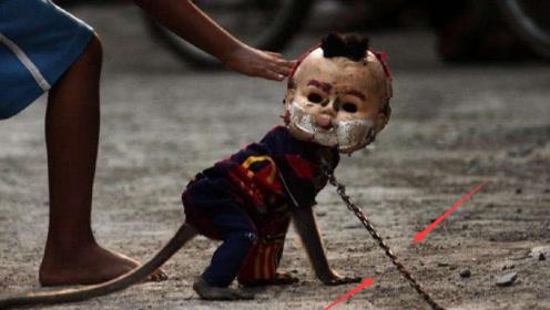 """印尼街头出现被锁住的""""孩童""""?游客好奇询问原因,看完泪目了"""