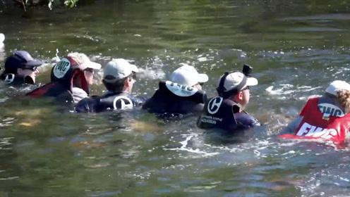 """暖心!海豚找不到路被困运河4天 志愿者涉水组""""人链""""巧妙施救"""