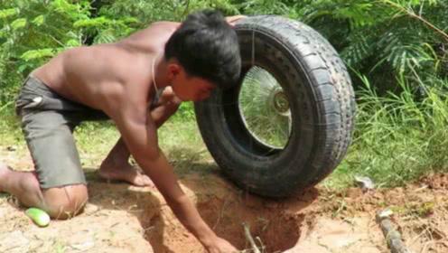 农村牛人用汽车轮胎制作陷阱,竟捉到了一只豪猪,网友:赚大了!