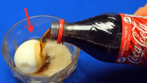 将一枚生鸡蛋放进可乐中,30天后小伙打开一看,彻底失控了!