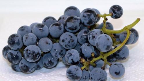 葡萄上面的那层白霜,到底是不是农药的残留?