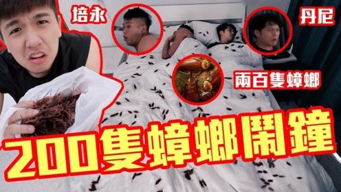 最奇特的叫醒方式:用200只蟑螂叫好友起床,看看他们什么反应