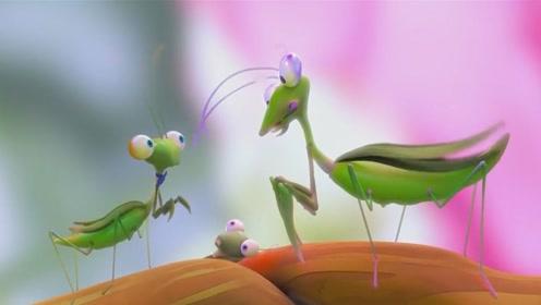 一部螳螂的爱情动画,爱一个人你愿意付出多少,也许这就是现实!