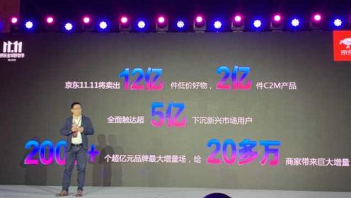 京东宣布今年双十一优惠力度最大,超百亿补贴