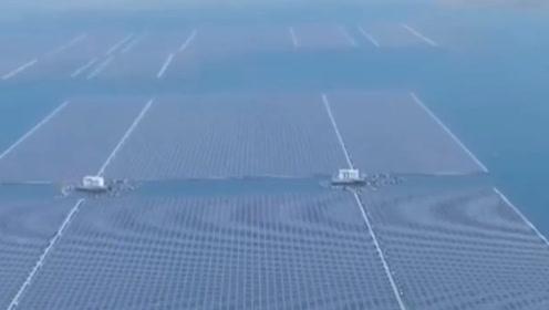 中国斥资十亿开采矿物,将矿坑表面布满太阳能电板,见了竖大拇指