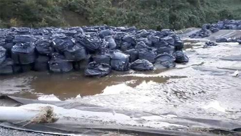 核污染灾情?海贝思引发日本多地洪水,福岛核污染物被冲走