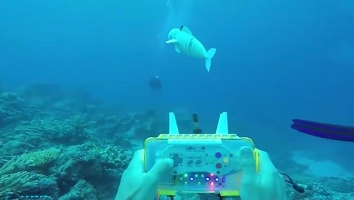 仿生机器鱼有什么用?它是否会对海洋造成负担?