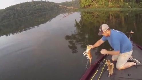 男子本想划船钓鱼,结果在湖泊里救起一对小奶猫,钓鱼秒变钓猫