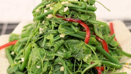 丝瓜尖,名副其实就是丝瓜藤上的嫩尖,鲜美、滑爽,营养丰富