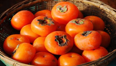 刚摘的柿子发涩难吃,简单的土方法,几天时间柿子变得香软不涩口