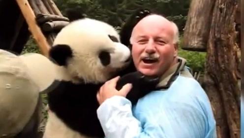 摇号才能看,激烈程度不输中国买房,老外为看熊猫究竟有多疯狂?