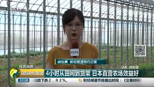 从田间到货架 仅需4小时 来自直营农场的蔬菜 都是当天采摘